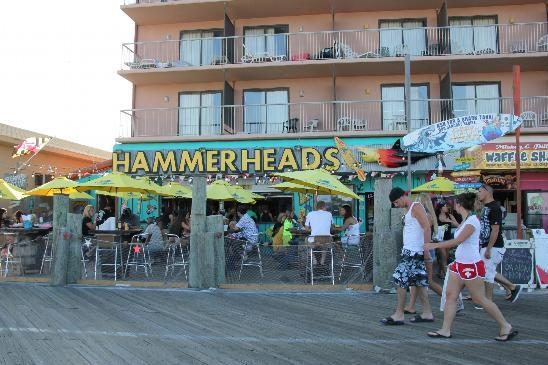 Hammerheads Raw Bar & Grill