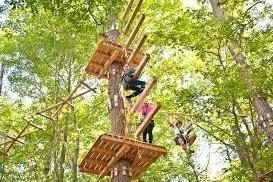 Frontier Town High Ropes