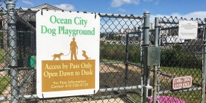 Ocean City Dog Playground