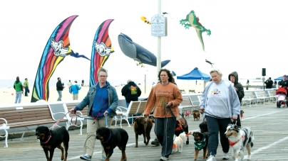 Board Walkin' for Pets: Annual event benefits Worcester County Humane Society