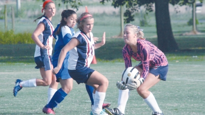 Worcester's Lady Mallards fight hard, but lose to Cougars, 2-1