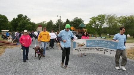 Bark for Life raises funds for American Cancer Society