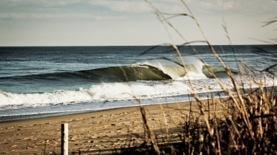 Did you get to surf this week?