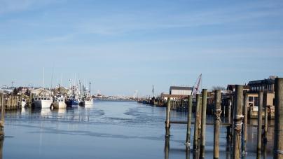 No monies dredged for harbor