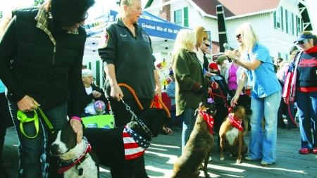 Annual Board Walkin' for Pets Saturday in OC