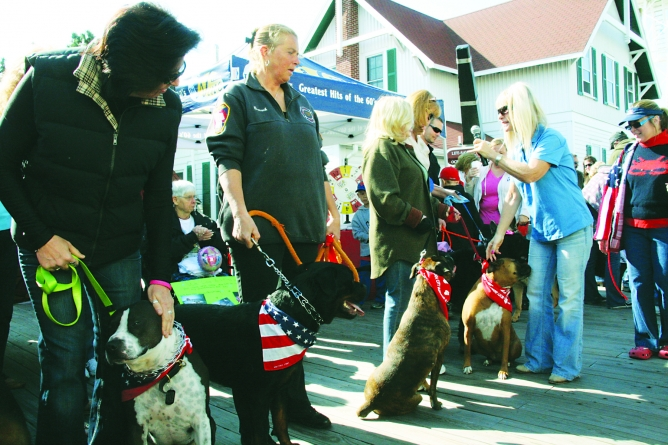 Annual Board Walkin' for Pets Saturday in OC