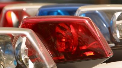 Treasurer's Office employee dismissed for alleged theft