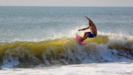 Nick Tribuno photos