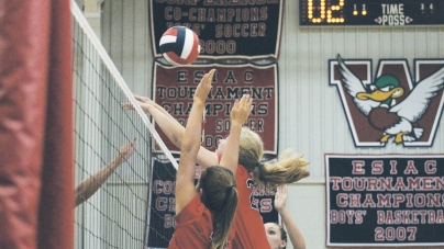Prep volleyball coach pleased with Mallards' performance