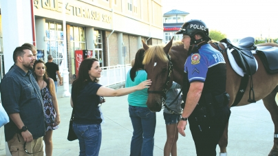 Police horse assaulted twice in same night by unrelated perps