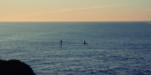 2014 Wetsuit Buyers Guide