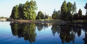 Coastal Bays to manage Grey's Creek
