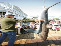 OC Shark Tournament comes to an end after 34-year run