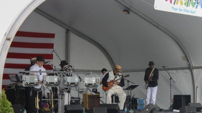 Live music all weekend at 25th annual Springfest