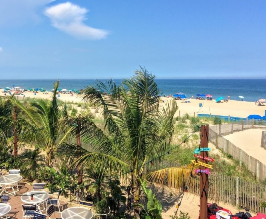Ocean City Happy Hour Guide and Daily Drink Specials