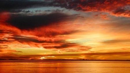 Sun Painted Skies (16 Photos)