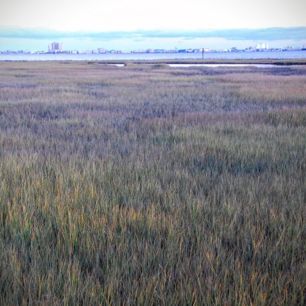 Ocean City over the marsh