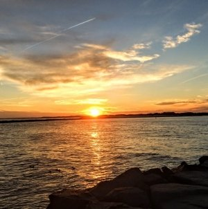 10 free events in Ocean City this summer