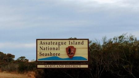 An off-season afternoon on Assateague Island