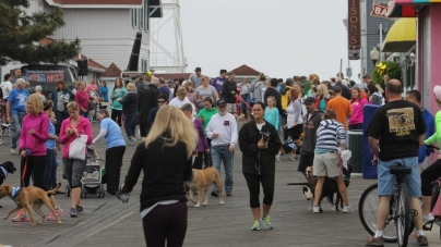 Ocean City is Going to the Dogs