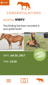 Horse app