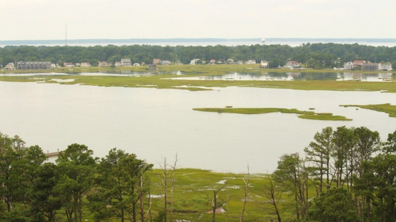 Day-tripping on Chincoteague