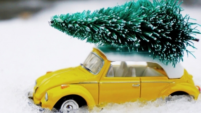 Christmas tree drop-off sites in Worcester County