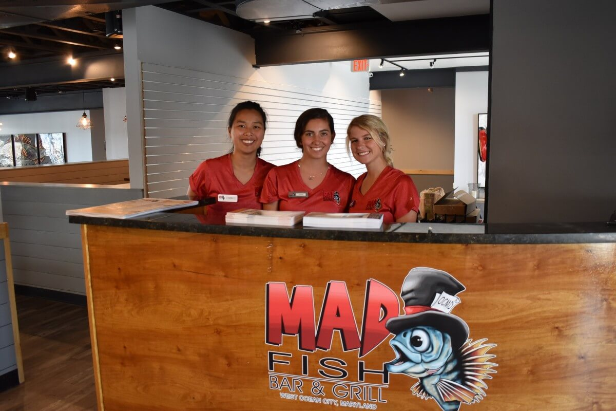 Mad Fish team