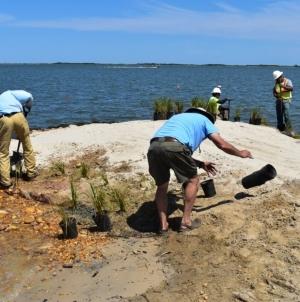 Resiliency project keeps Assateague's shoreline protected