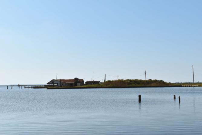 Abandoned Eastern Shore: Exploring George Island Landing
