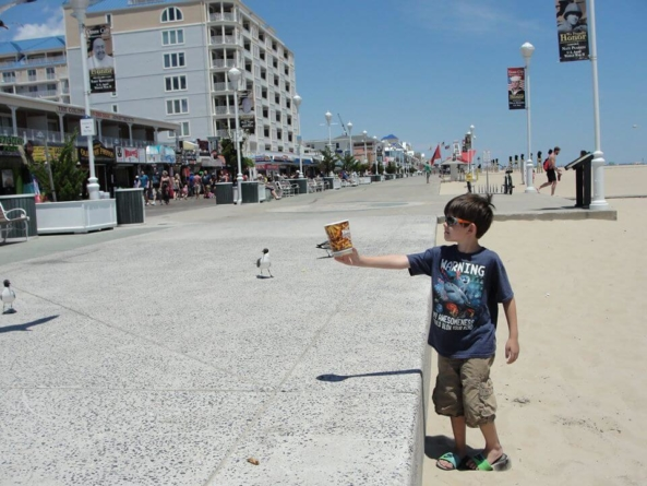 """""""Ocean City From a Kid's Perspective"""" as told by Connor Daley, age 9"""