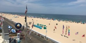 This Week in Ocean City: Thriving in the Heat Wave!