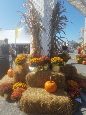 This week in OC Sept 23-29
