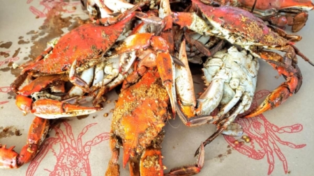 Ocean City Crab Houses Expand Outdoor Dining