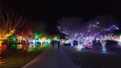 A Sparkling Winterfest of Lights